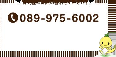 お気軽にお問い合わせ下さい!|089-975-6002
